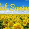 Glad_Sommar_w510